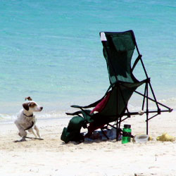 Taken in Providenciales, Turks and Caicos